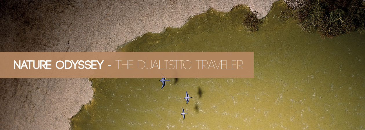 Nature Odyssey – The Dualistic Traveler